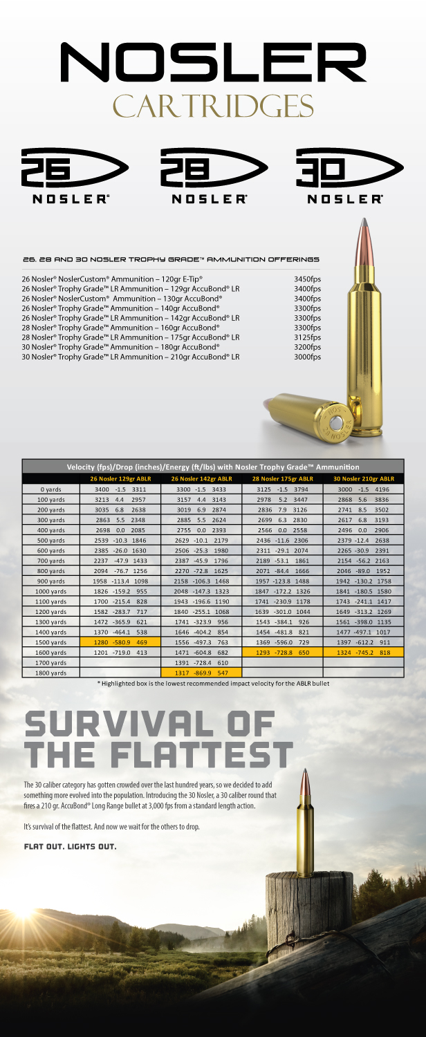 Nosler Cartridge Family Info Graphic