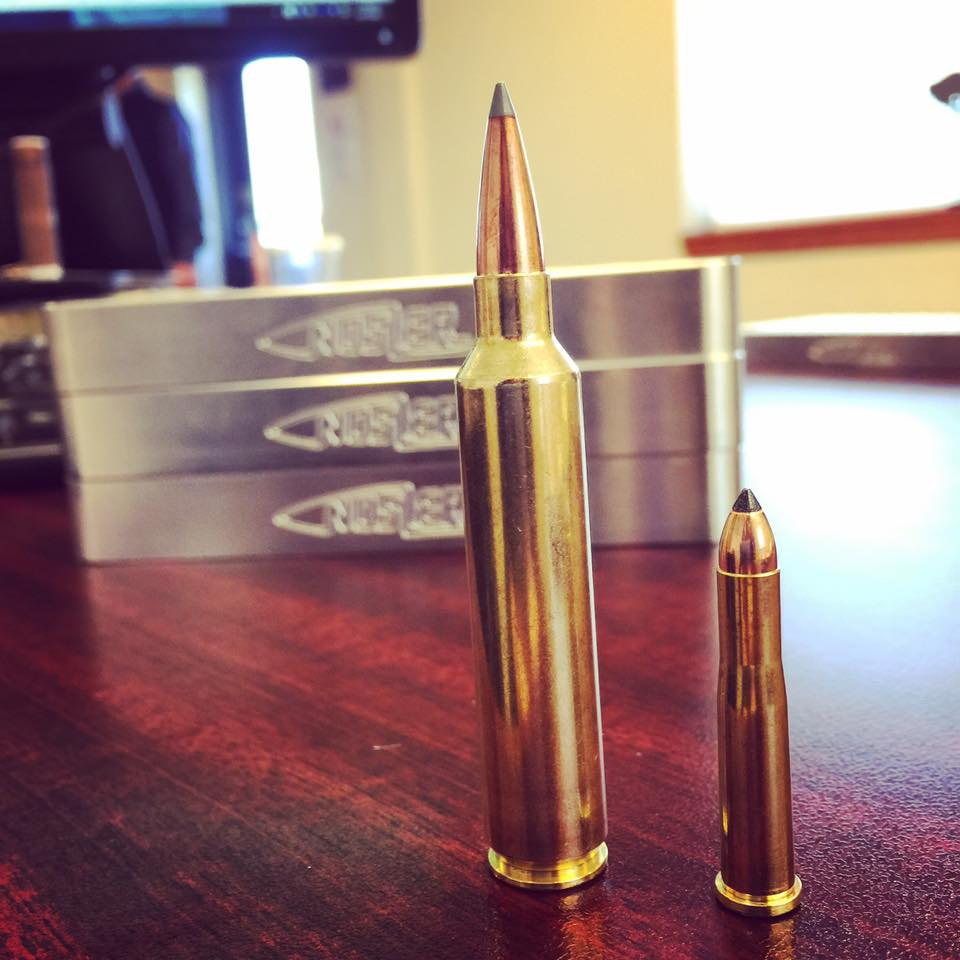 28 Nosler and 22 Hornet Picture
