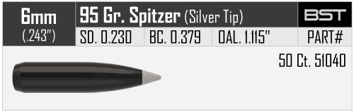 6mm-95gr-BST-Bullet-Info.jpg