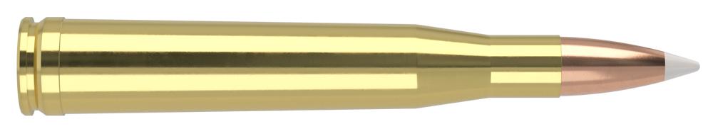 AmmunitionBuilder_300-H&H-Magnum-AB.jpg