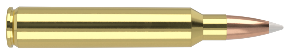 AmmunitionBuilder_300-RUM-AB.jpg