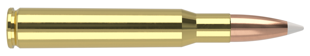 AmmunitionBuilder_30-06-Springfield-AB.jpg