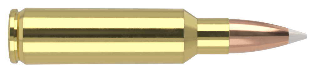 AmmunitionBuilder_325-WSM-AB.jpg
