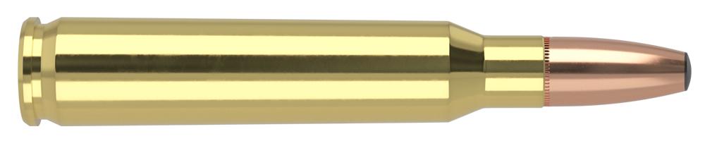 AmmunitionBuilder_223-REM-BSB.jpg