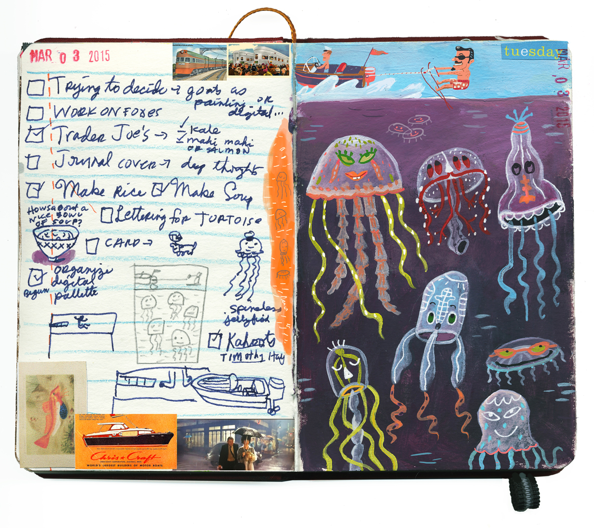 Spineless jellyfish sketchbook