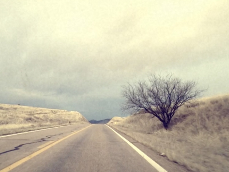Wander_1.jpg