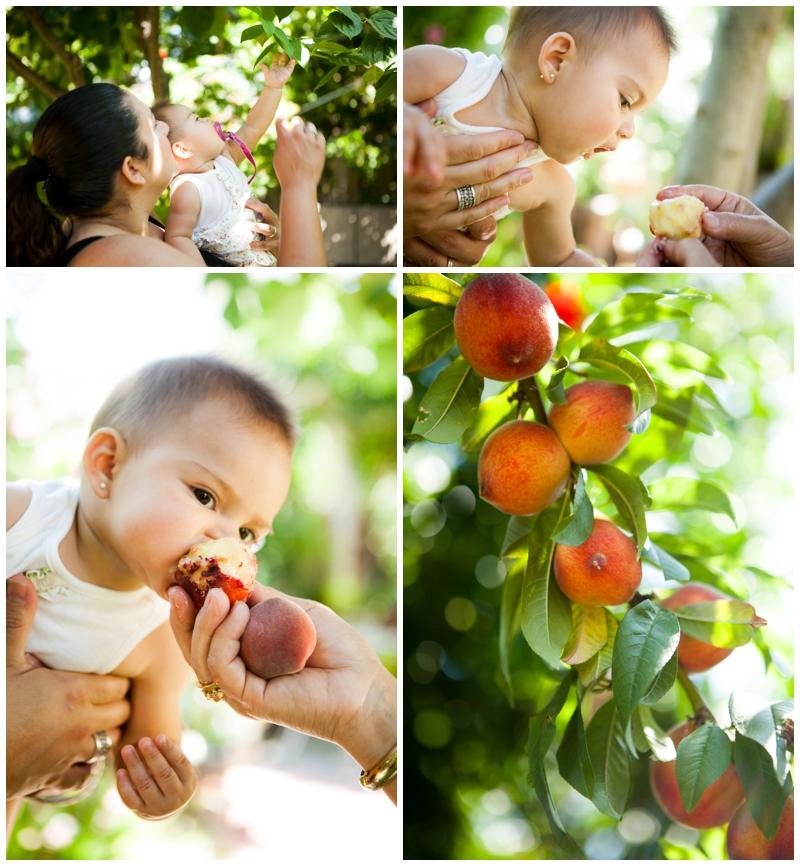Food-Love-Tradition_07.jpg