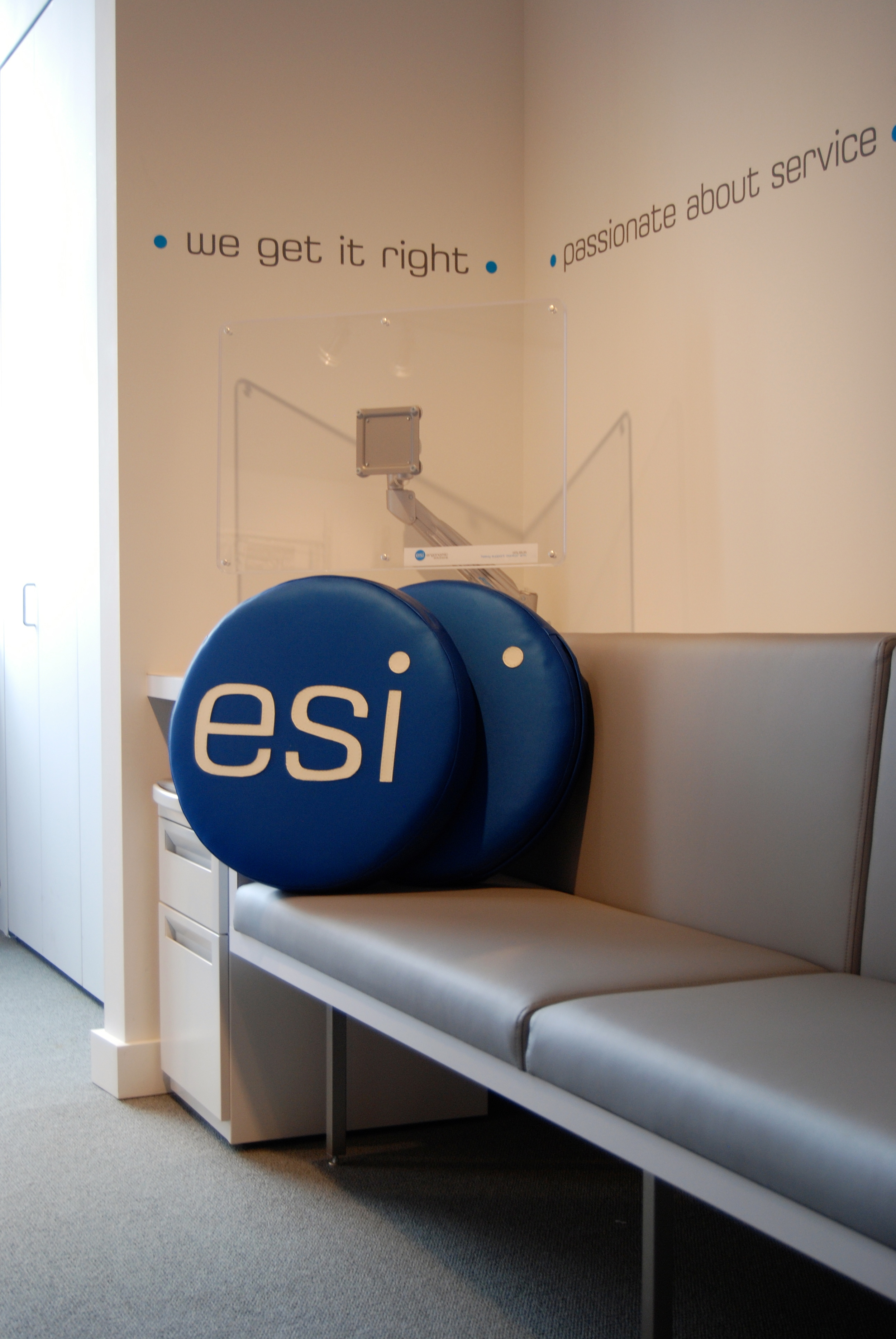 ESI Branded Environment