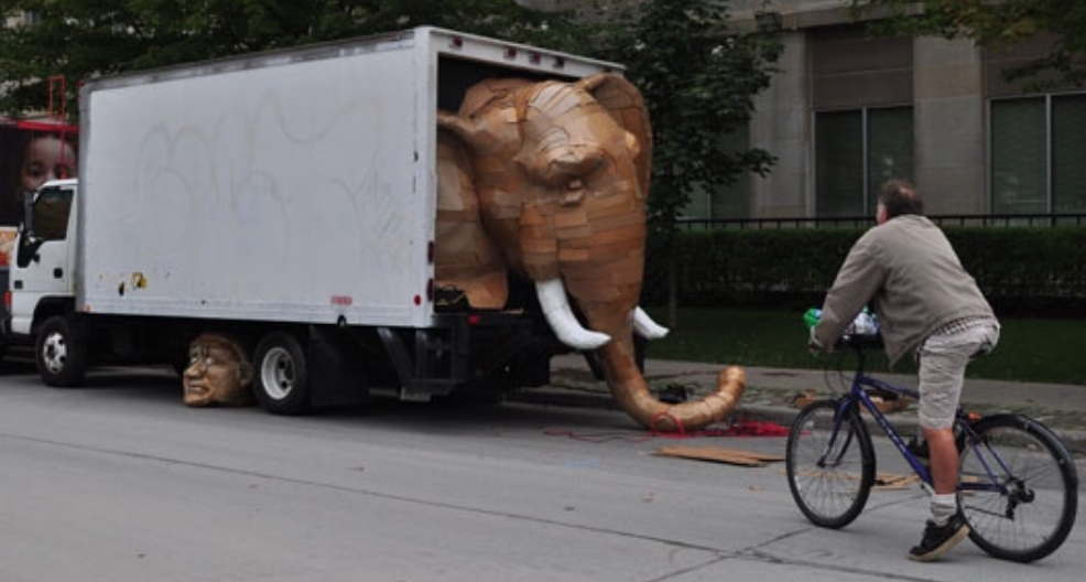 There is an elephant in the truck