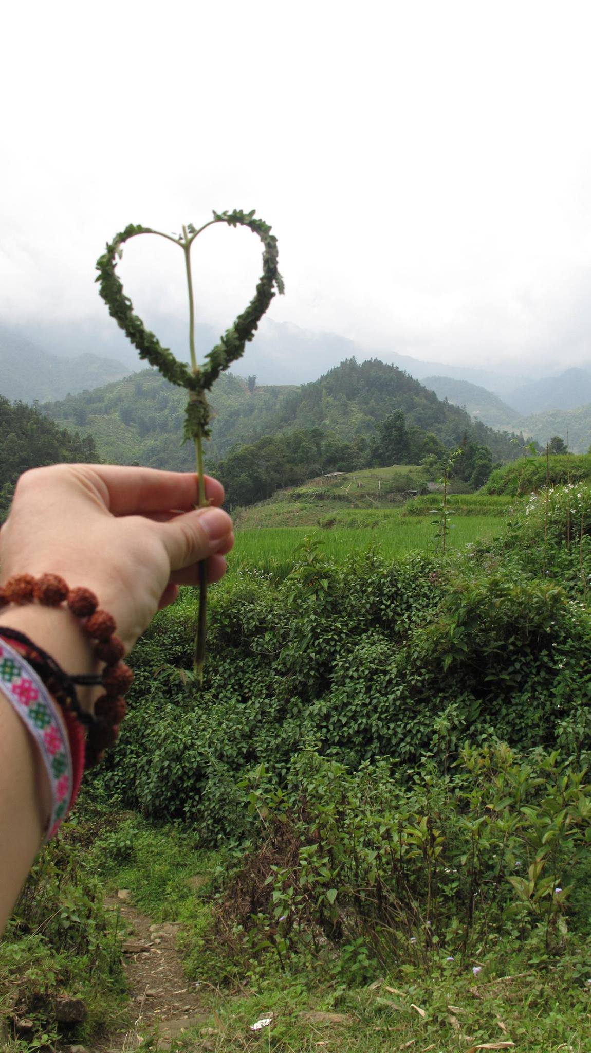 """Love in the Mountains"" - Hike with Indigenous Women in Sapa, Vietnam 2015"