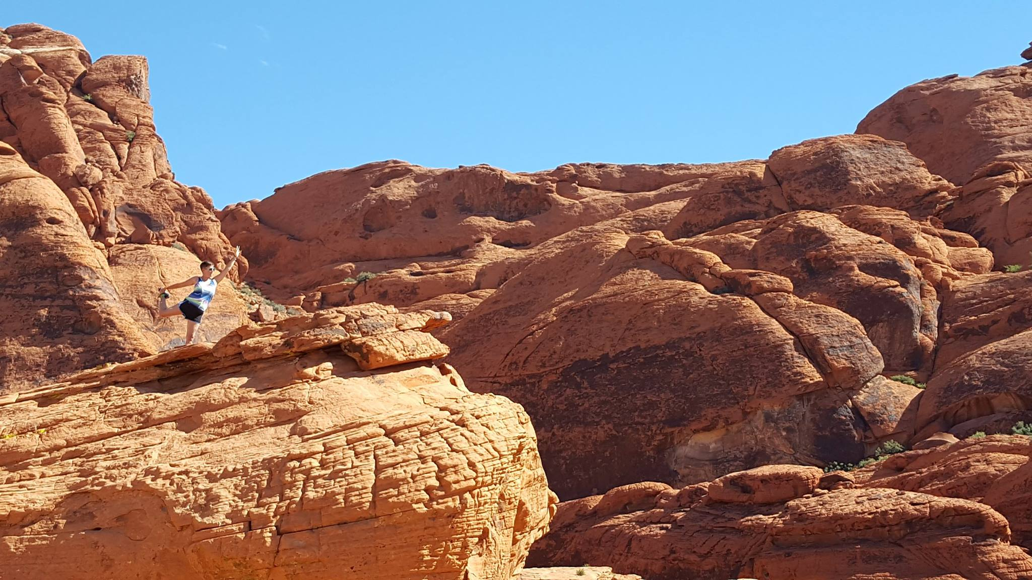 """""""Red Rock Asana"""" - Red Rock Canyon National Conservation Area, Las Vegas, NV"""
