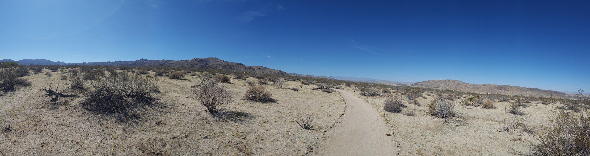 """""""The Long, Winding Road"""" - Southern California Vipassana Center Trail, Joshua Tree, CA"""