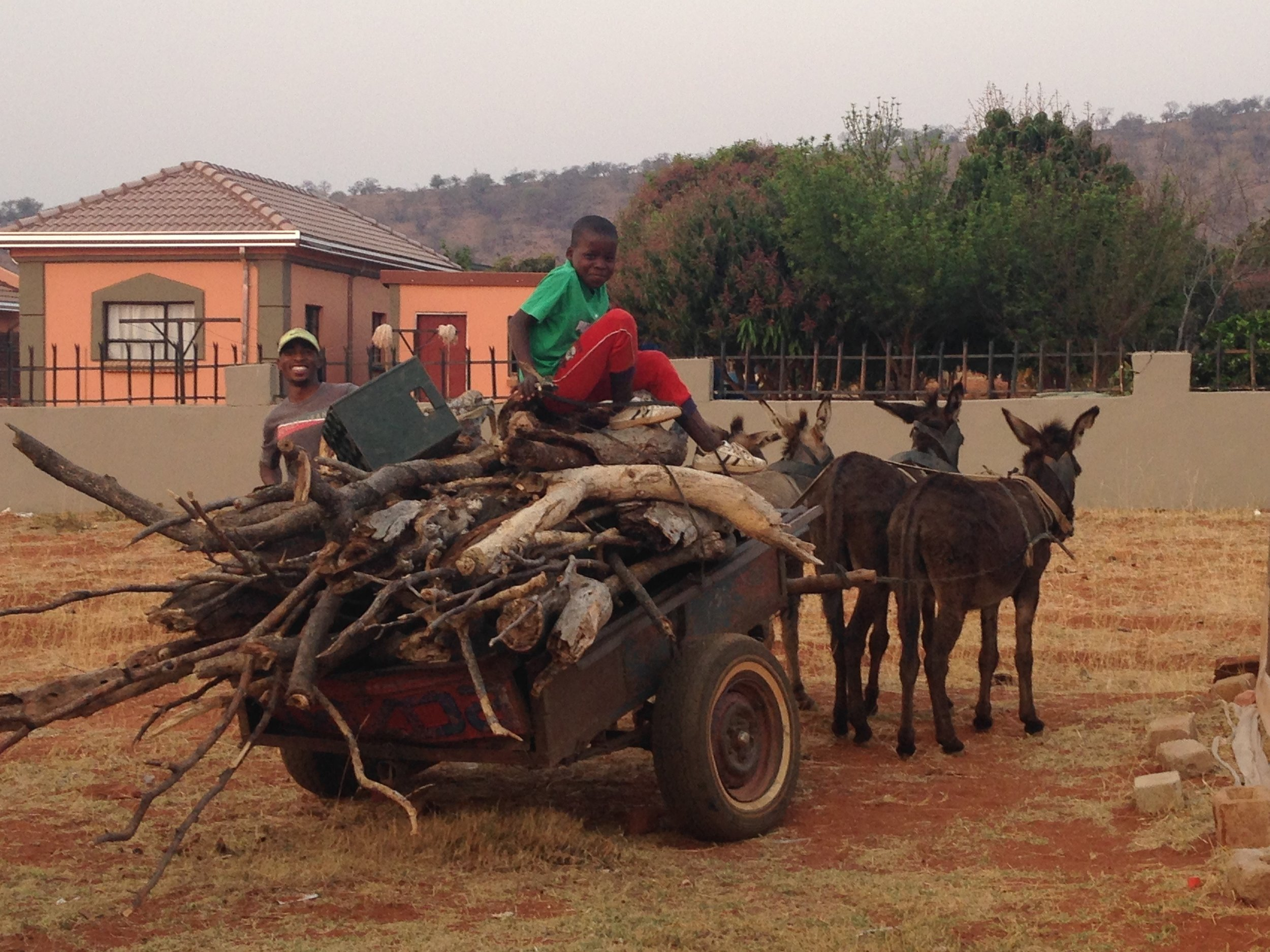 First Arrival  - Limpopo Province, South Africa