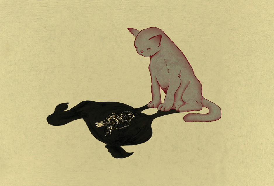 cat & bird.jpg