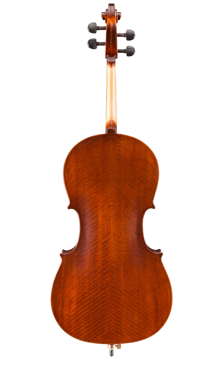 Eastman VC95 Hybrid Cello