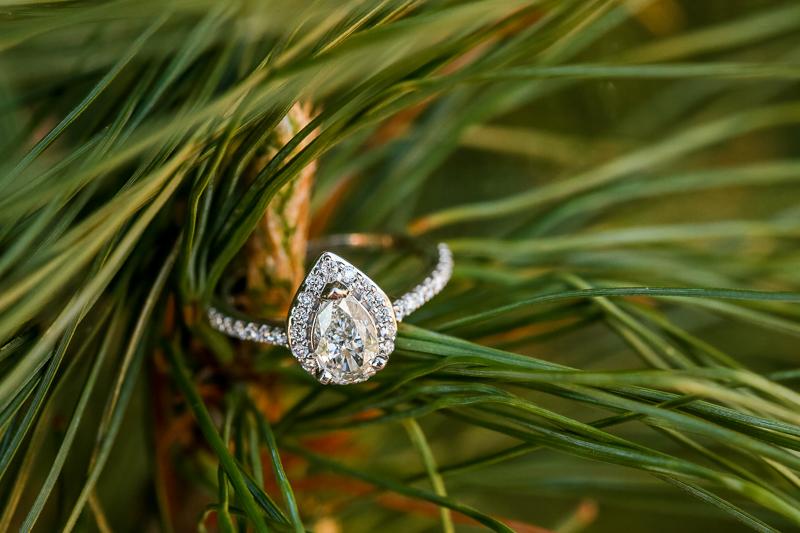 surprise-proposal-photographer-dc