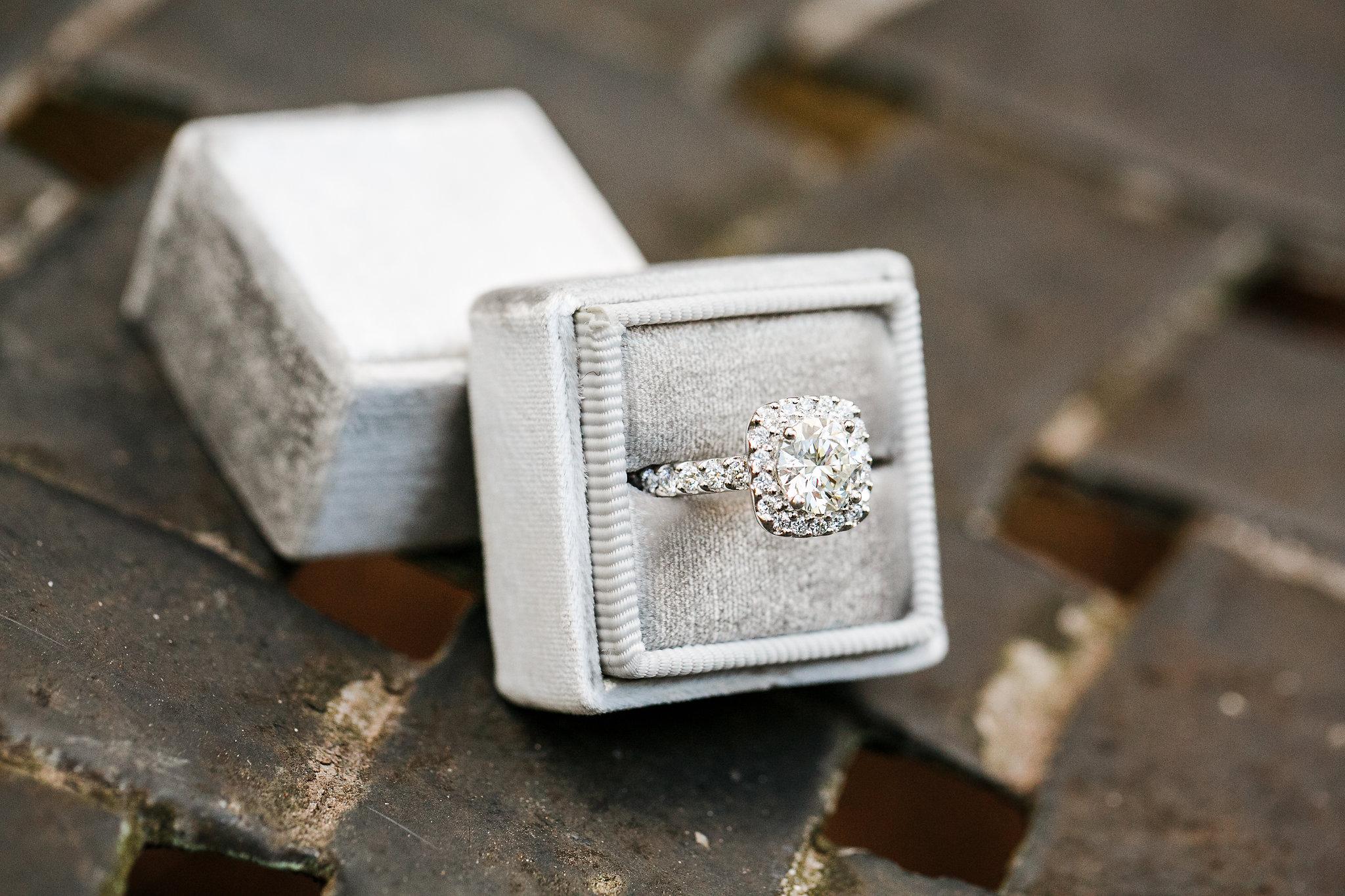 Shenandoah-valley-surprise-proposal-photographer