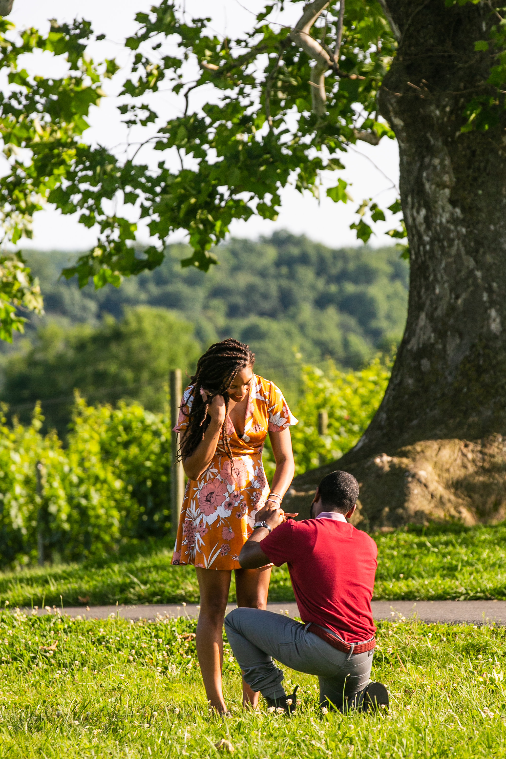 Greenhill-Winery-Surprise-Proposal-Engagement-Session