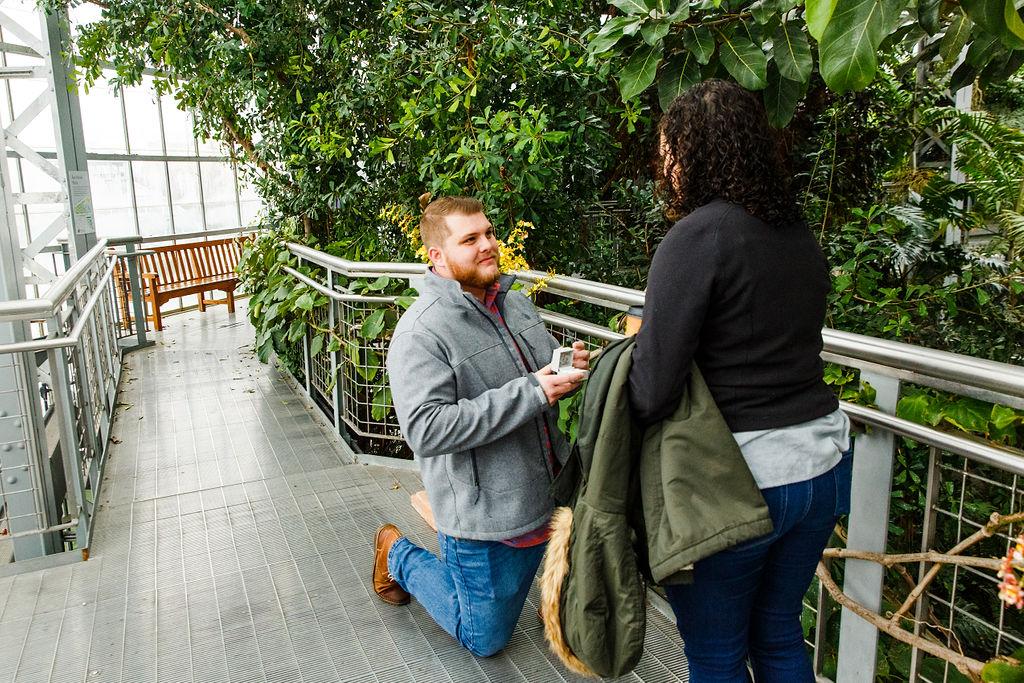 Washington-DC-Botanical-Gardens-Surprise-Proposal-Photographer