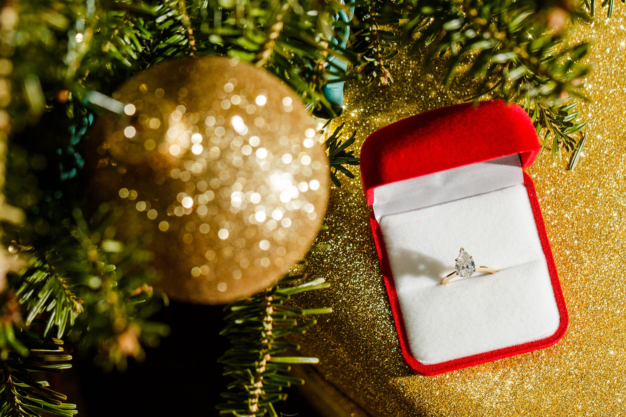 Washington-DC-Christmas-Surprise-Proposal-Photographer
