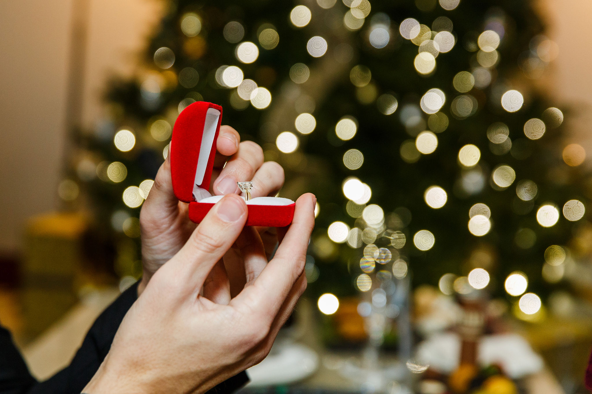 Washington-DC-Christmas-Surprise-Marriage-Proposal-Photographer