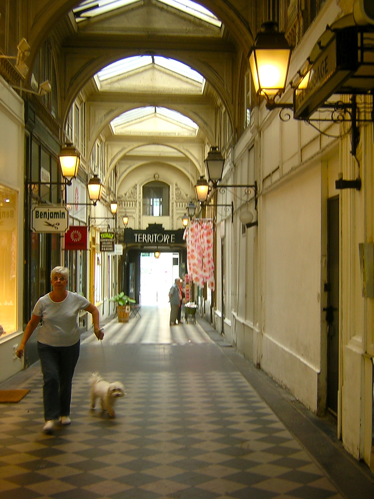 The Passages of Paris from the Palais Royal to the Grand Boulevards