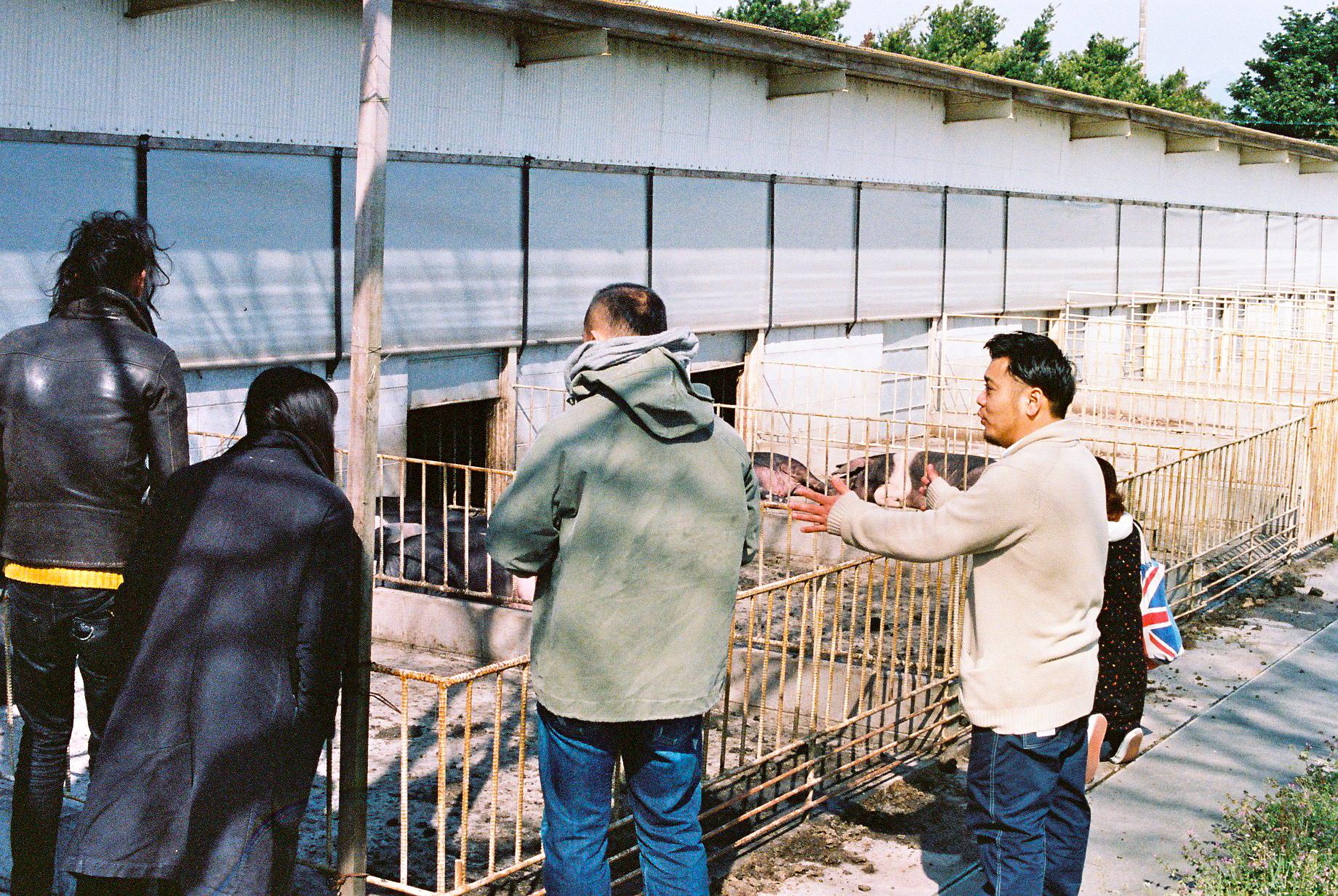 豚を育てることから加工までをすべて手がける『ふくどめ  少牧場』の福留洋一さんから原産国イギリスの豚 「純粋  サドルバック種」に関するお話をうかがう。