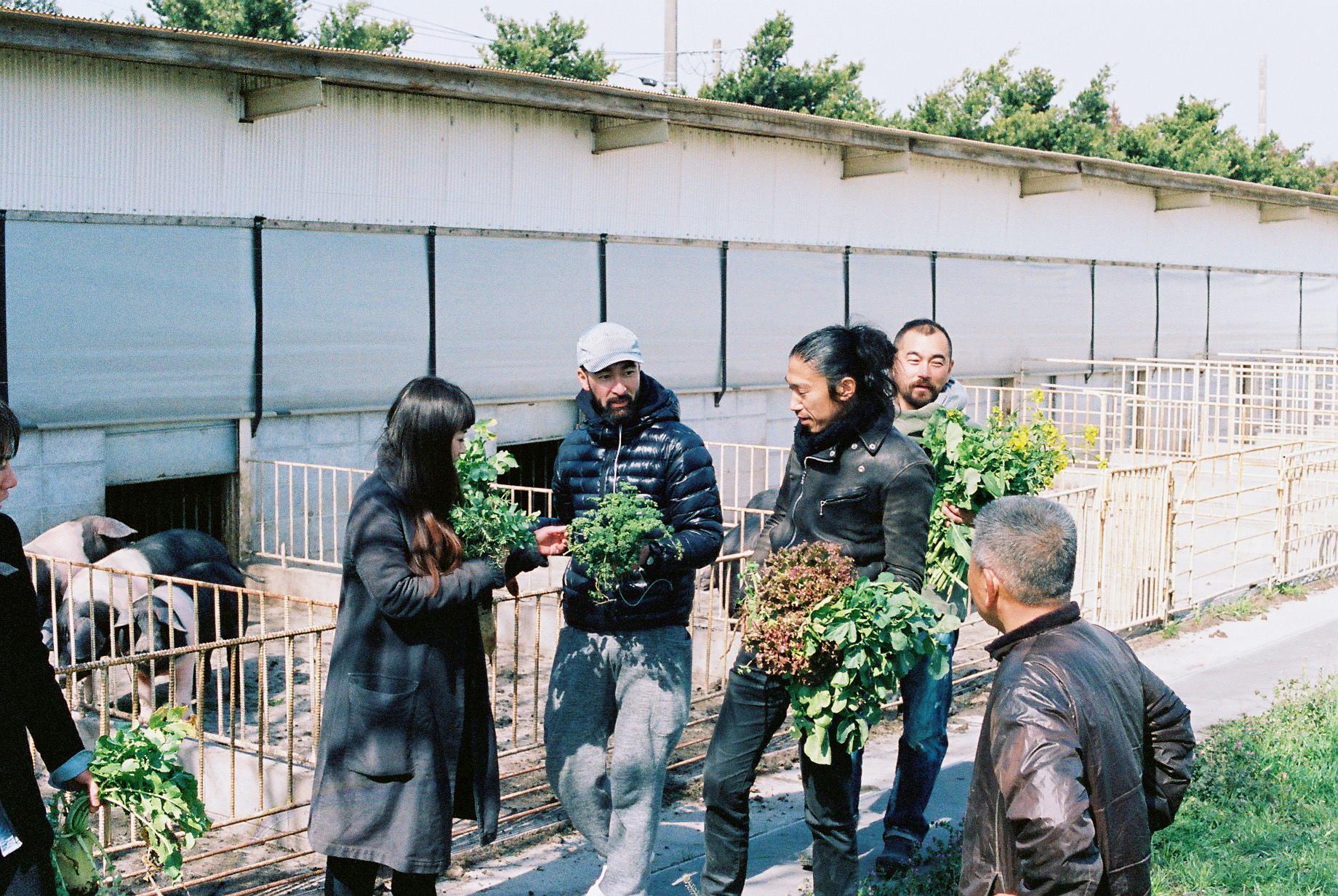 自然農で育てられた野菜に興奮する料理人たち。