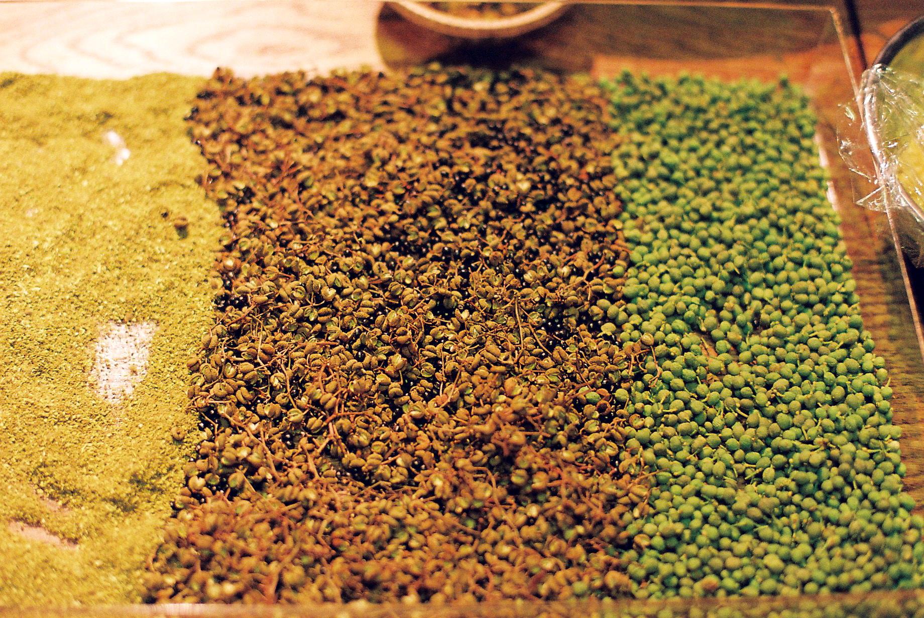和歌山の山椒を料理に使用させていただきました。右から  、山椒のフレッシュ、ドライ、パウダーです。黒い粒を口  にすると、強烈な刺激があるので要注意。今後も和歌山の  山椒をつかったNomadicオリジナルレシピに注目で  す。