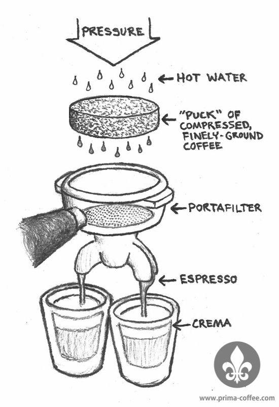 Photo: Prima-Coffee.com