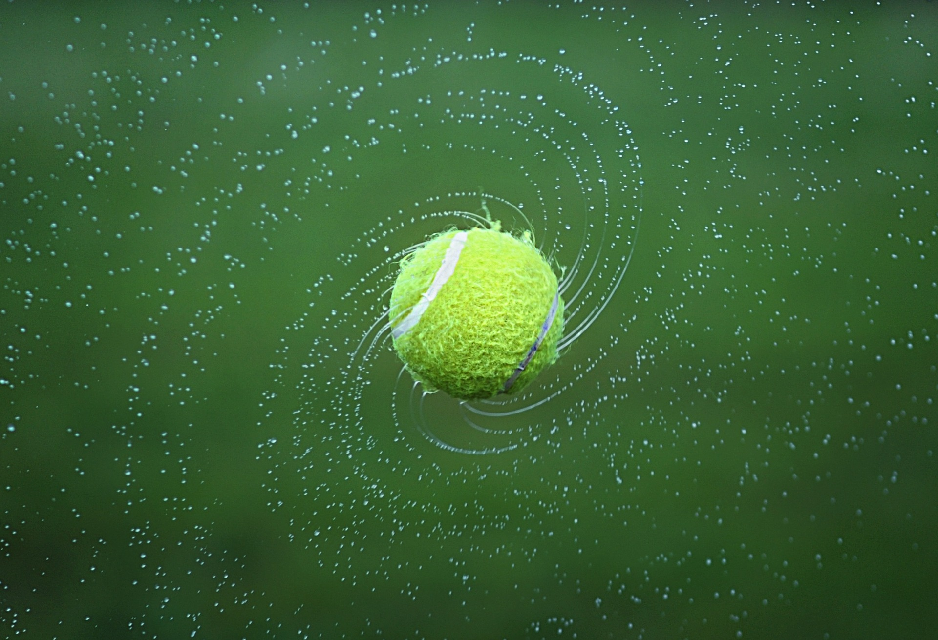 jp-linguistics-tennis-1381230_1920.jpg