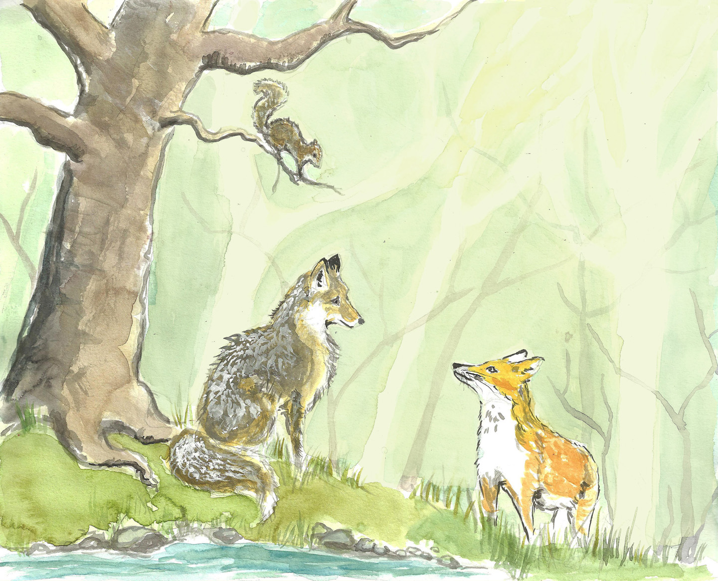 The Foxes Meet, 2014. Watercolor, ink, gouache.