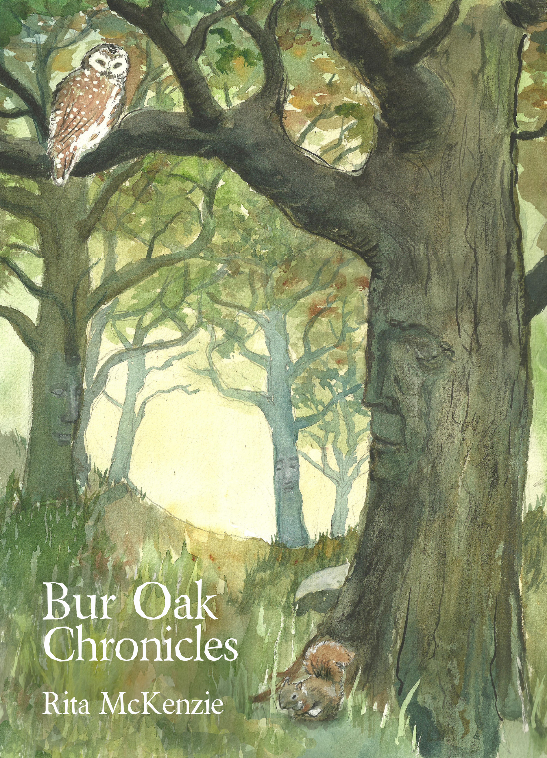 Cover design and illustration of Bur Oak Chronicles