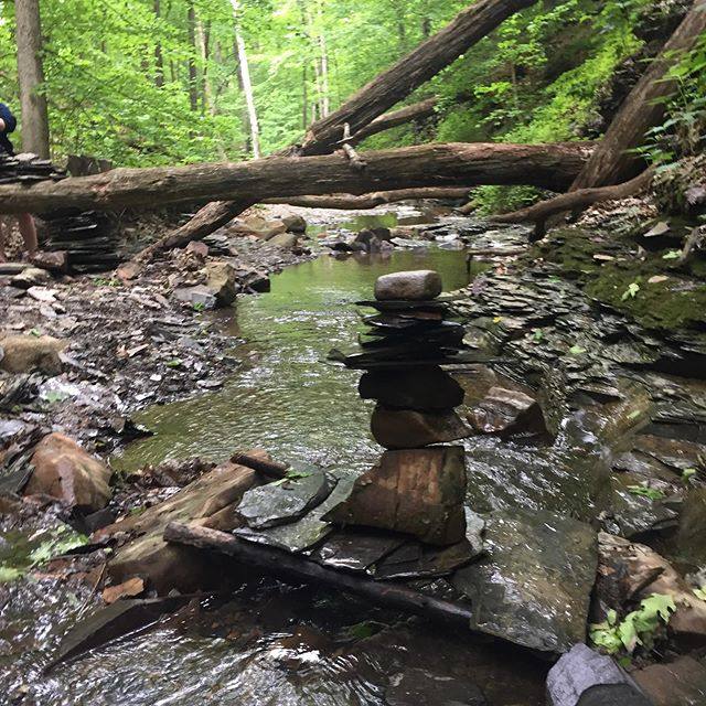 The most blissfully peaceful field trip in the world, making Andy Goldsworthy-inspired nature installations with 8th-grade artists at Highbanks Metro Park. Future hikers may wonder what sorts of odd rituals happened in this mysterious ravine.... #andygoldsworthy #8thgradeart #natureart
