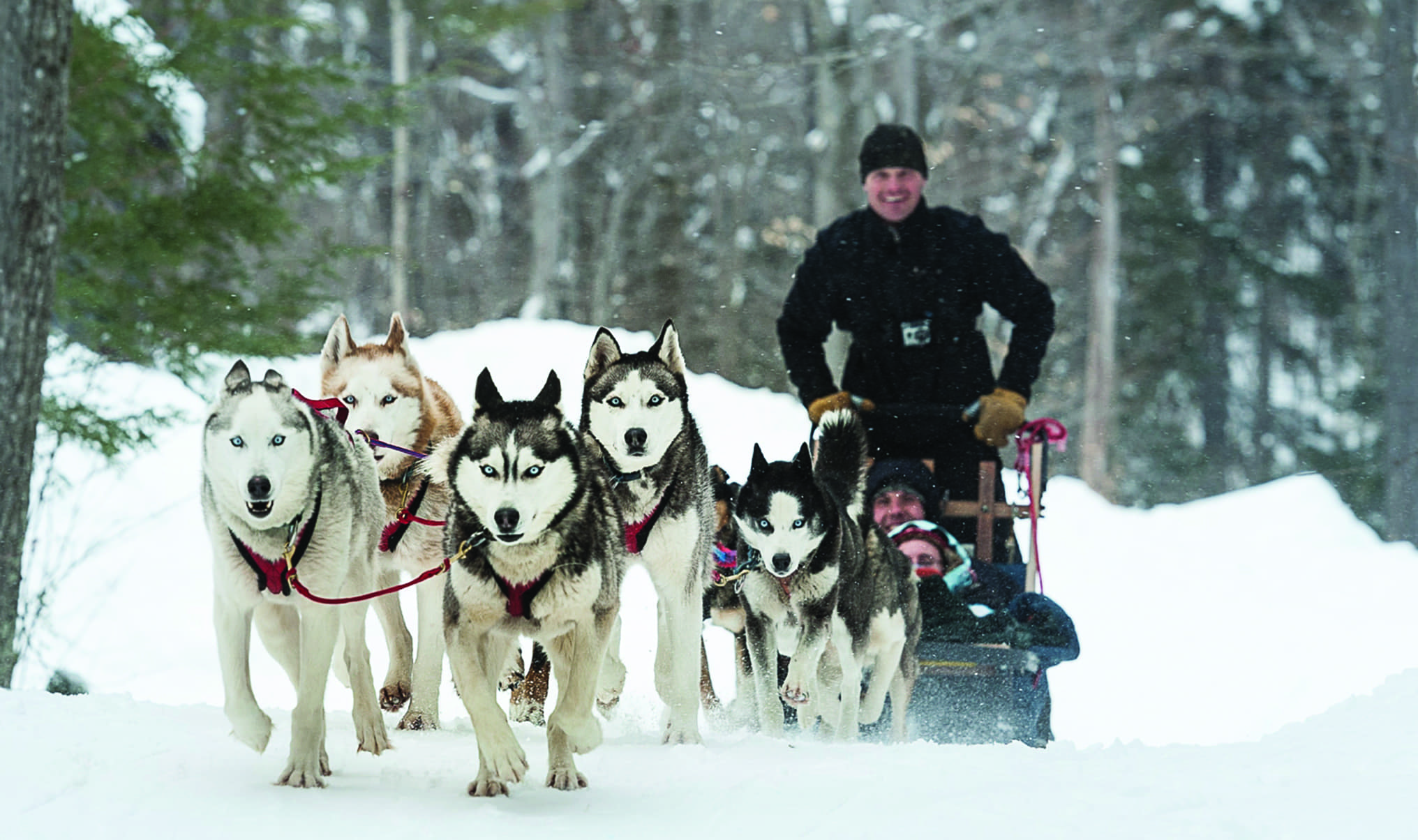 160925_dogsledding_2032x1204_4.ashx.jpeg