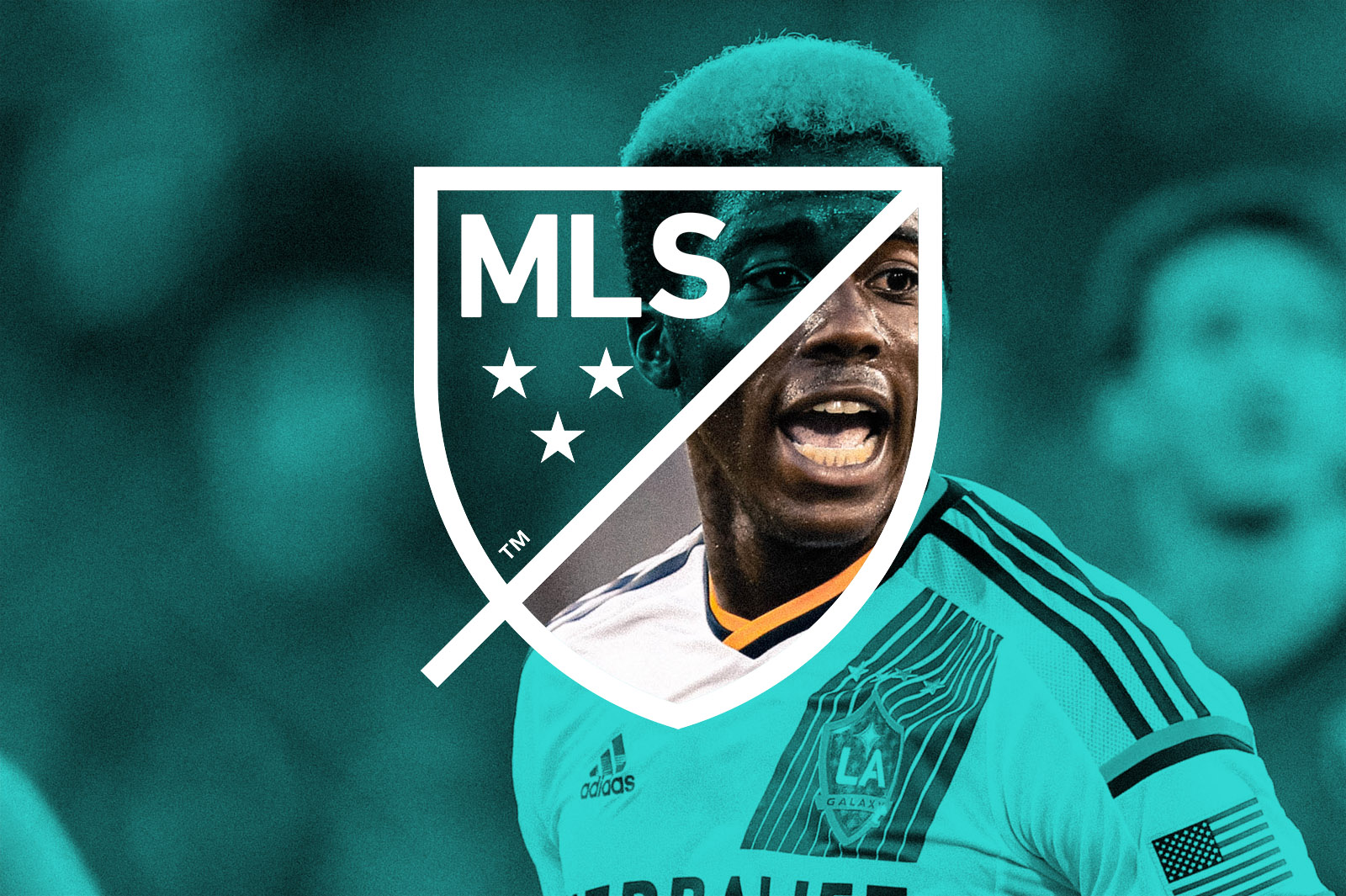 MLS_WINDOW_LOGO_2.jpg
