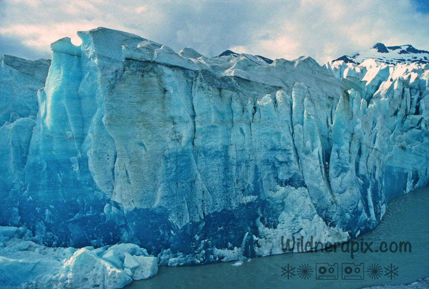 Fresh Ice on the Face of the Mendenhall Glacier (A19-23)