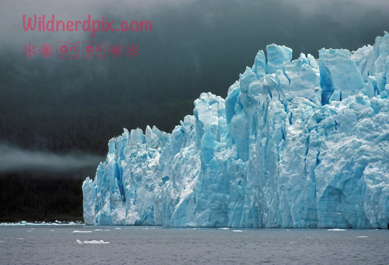 The Columbia Glacier in Alaska in 1978 before it began its massive retreat (AK18-83)