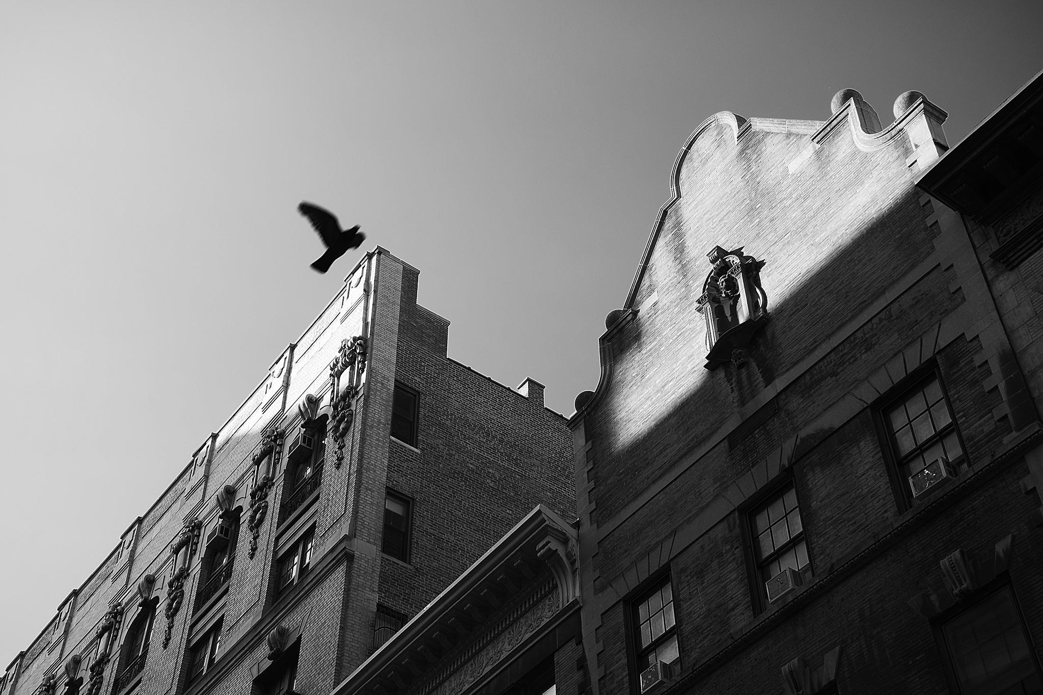 Morningside Heights, July 2014.