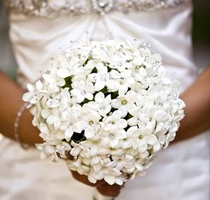 Stephanotis is the bridal good luck flower