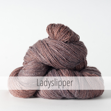 ladyslipper_375