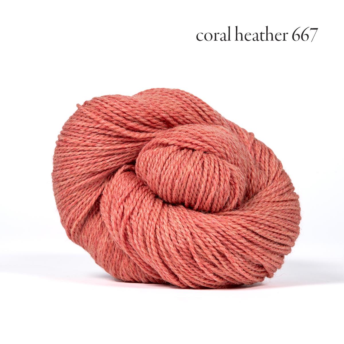 coral heather 667.jpg