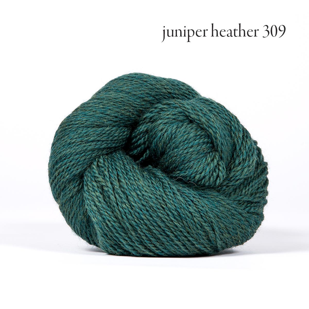 juniper heather 309.jpg