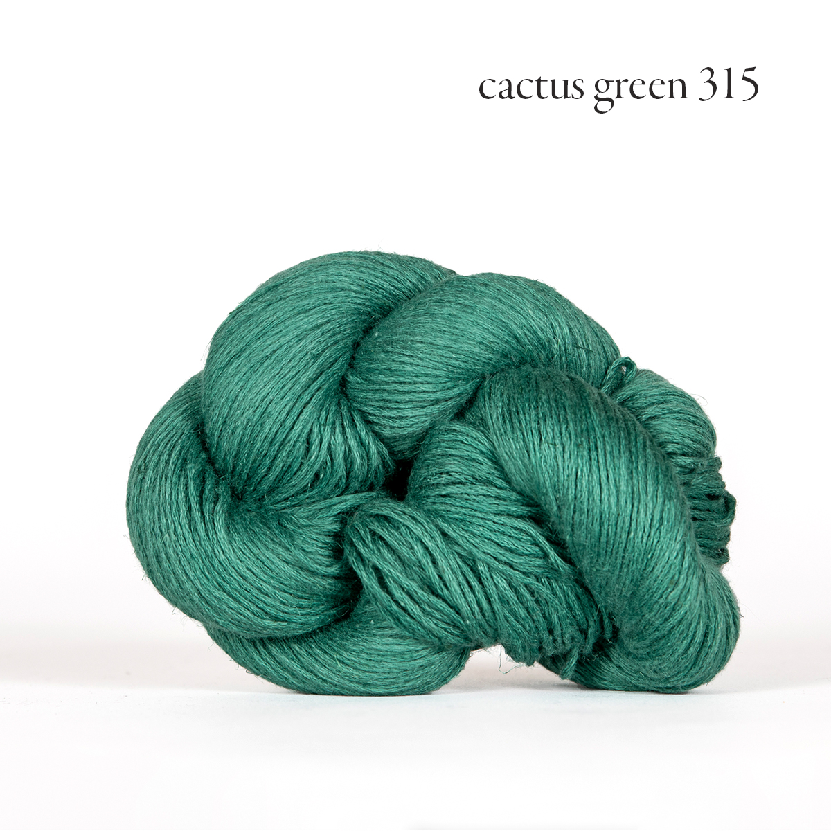 mojave cactus green 315.jpg