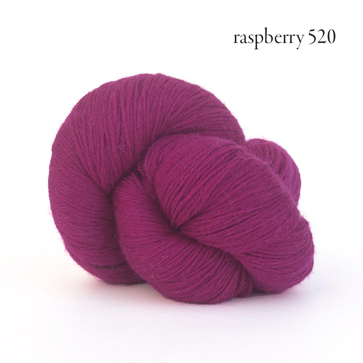 perennial raspberry 520.jpg