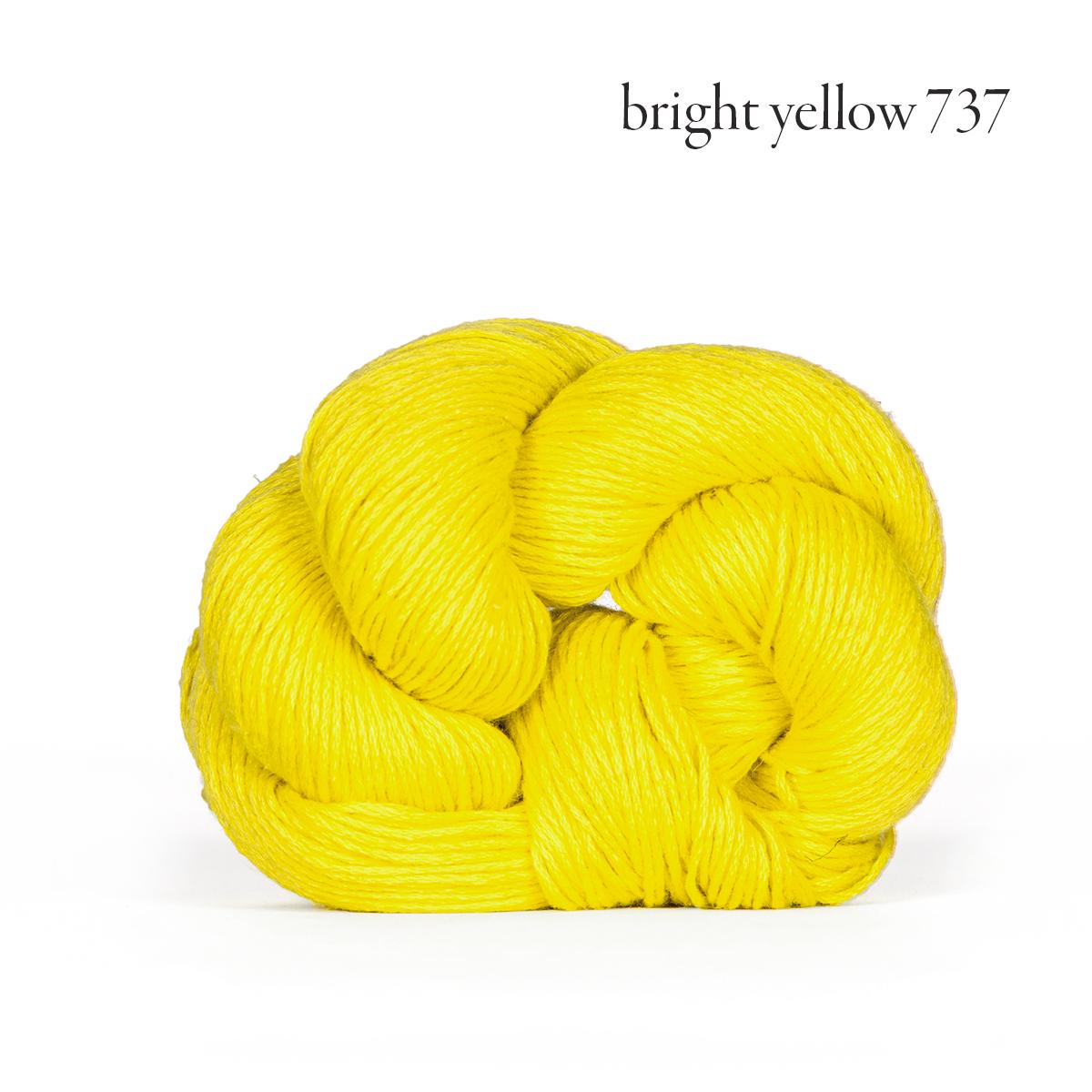 mojave bright yellow 737.jpg
