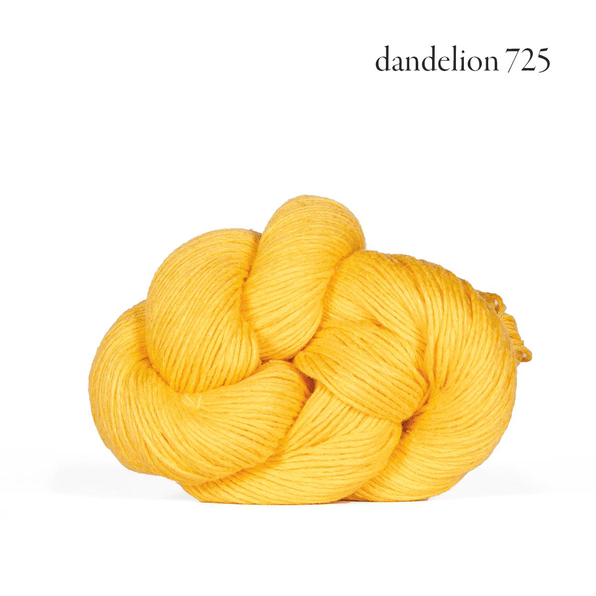 mojave dandelion 725.jpg