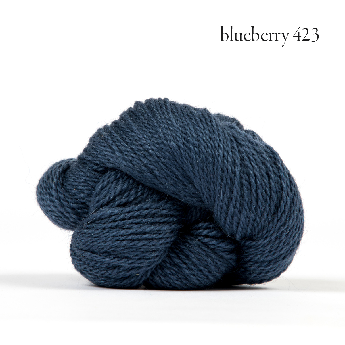 Andorra blueberry.jpg