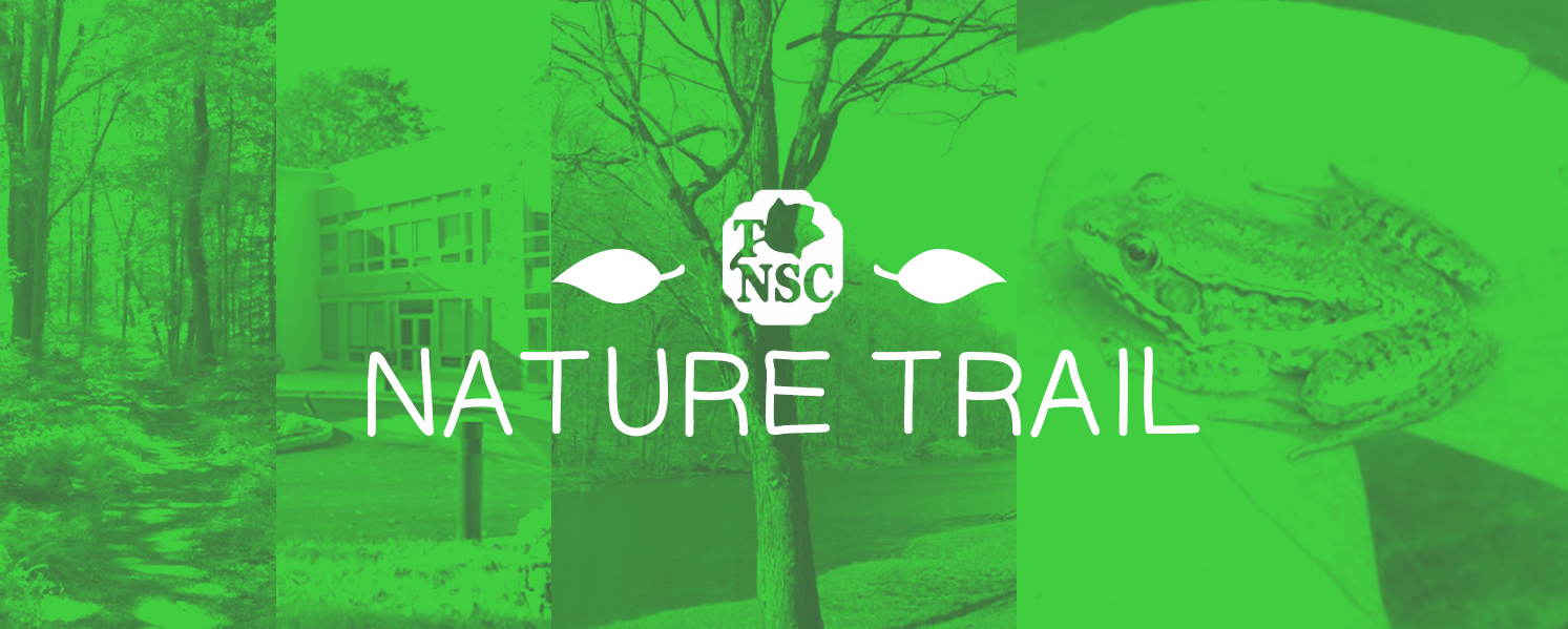 Nature Trail banner