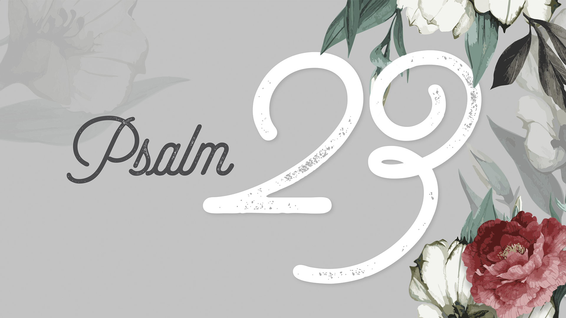 Psalm 23 Web Image Graphic.jpg